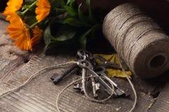 Gamla tangenter, tvinnar, hösten blommar på träbakgrund Royaltyfria Bilder