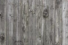 Gamla träbräden med wood korn Fotografering för Bildbyråer