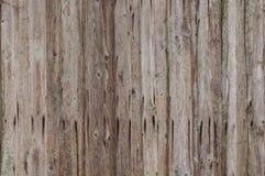 Gamla träplankor 001 Royaltyfria Bilder