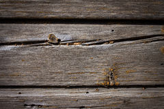 Gamla träplankor (för bakgrund) Arkivfoto
