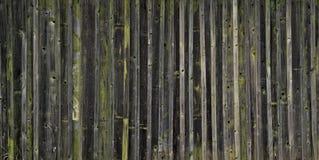 Gamla träplankor med kvarlevor av målarfärg Arkivfoto