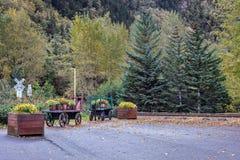 Gamla trävagnar och härliga höstblommor och träd vid en järnvägkorsning royaltyfri foto