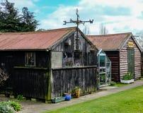 Gamla uthus och skjul som ses i en engelsk tillbaka trädgård royaltyfri fotografi