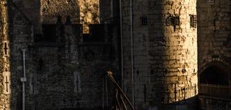 Gamla väggar av slotten med ett runt torn, sidoingången till Royaltyfria Bilder