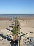 Gamla vågbrytare står mot havet av kusten av Dymchurch på en sandig strand på en solig dag Arkivfoto