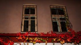 Gamla Windows med stänger på natten arkivfoto