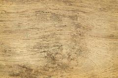 Gamla wood paneler för bakgrundstextur Fotografering för Bildbyråer