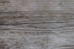 Gamla wood texturgrå färger Arkivbild