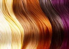 Gamma di colori di colori dei capelli Fotografia Stock Libera da Diritti