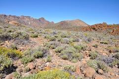 Gamma di Las Canadas del Teide fotografia stock