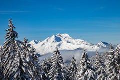 Gamma di montagne di bianco di Snowy con gli alberi ed il cielo blu Immagine Stock