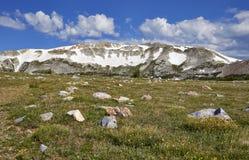 Gamma di Snowy, Wyoming fotografie stock libere da diritti