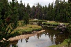 Gamma di Wind River, Wyoming Fotografie Stock Libere da Diritti