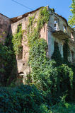 Gammal övergiven bevuxen europeisk byggnad Royaltyfri Fotografi