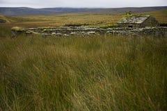 Gammal övergiven stuga i Yorkshire dalar Yorkshire England Royaltyfria Foton