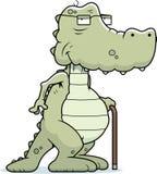 gammal alligator royaltyfri illustrationer