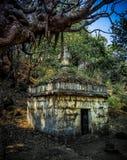 gammal arkitektonisk forntida tempel med läskiga sidor mindre träd royaltyfri foto