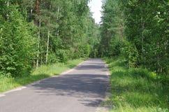 Gammal asfaltväg i träna Fotografering för Bildbyråer