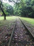 Gammal avlagd järnvägsspår Arkivbilder