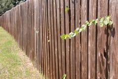gammal avskildhet för staket Fotografering för Bildbyråer