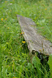 Gammal bänk som är bevuxen vid växter Royaltyfria Foton