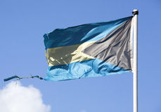 Gammal bahamansk flagga Arkivbild