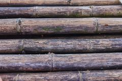 gammal bambu Fotografering för Bildbyråer