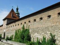 Gammal befästning i den Lviv staden Royaltyfria Bilder