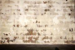 gammal belagd med tegel vägg Royaltyfri Foto