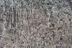 Gammal betongvägg Arkivfoton