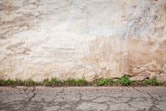 Gammal betongvägg och knäckt asfaltgolv Fotografering för Bildbyråer