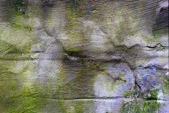 Gammal betongv?gg som ?r flerf?rgad royaltyfri foto