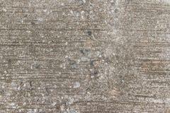 Gammal betongväggbakgrund Royaltyfri Bild