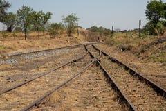 Gammal bevuxen använd järnvägsspårgenomskärningssammanfogning Royaltyfri Foto