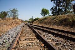 Gammal bevuxen använd järnvägsspårgenomskärningssammanfogning Arkivfoto