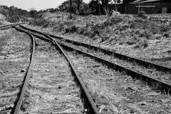 Gammal bevuxen använd järnvägsspårgenomskärningssammanfogning konstnärligt Co Royaltyfri Fotografi