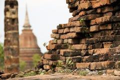gammal bevuxen sukhothaivägg för tegelsten Arkivfoto