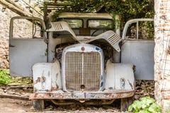 Gammal bil i blommaträdgård Arkivfoto