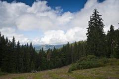 Gammal bil nära prydlig skog i de Carpathian bergen Arkivbild