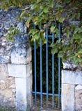 gammal blå port Royaltyfri Bild