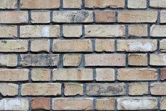 gammal blek vägg för tegelsten Royaltyfria Foton