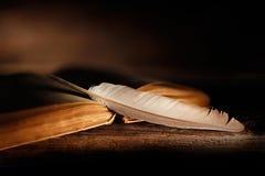 Gammal bok med öppna sidor och fjäderpenna på trätabellen royaltyfria foton