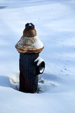 Gammal brandpost i snö Royaltyfri Fotografi