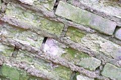 Gammal Brickwork red med den vita skarven Vit silikattegelsten Smula tegelsten ibland arkivbilder