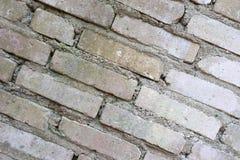 Gammal Brickwork red med den vita skarven Vit silikattegelsten Smula tegelsten ibland royaltyfri bild