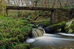 Gammal bro över den lilla vattenfallet Arkivfoton