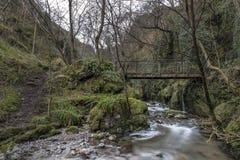 Gammal bro, Alva Glen Scotland Fotografering för Bildbyråer