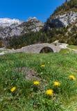 Gammal bro i ett naturligt landskap arkivfoto
