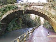 Gammal bro i jesmonddekan Arkivbilder
