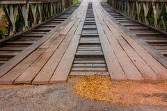 Gammal bro i Laos träblandat stål Royaltyfri Bild